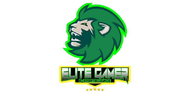 Elite Gamer